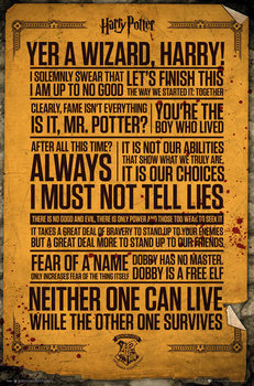 Juliste Harry Potter - Quotes