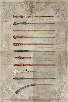 Juliste Harry Potter - The Wand Chooses The Wizard
