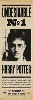 Juliste Harry Potter - Undersirable no. 1