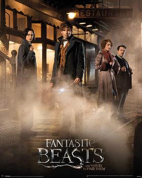 Juliste Ihmeotukset ja niiden olinpaikat - Fantastic Beasts