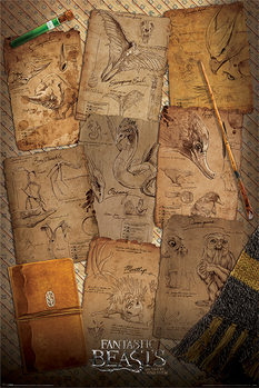 Juliste  Ihmeotukset ja niiden olinpaikat - Notebook Pages