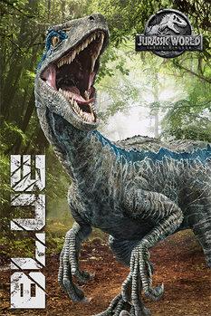 Juliste  Jurassic World: Kaatunut valtakunta - Blue