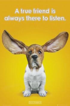 Juliste Keith Kimberlin - ears