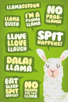 Juliste  Llama - Quotes