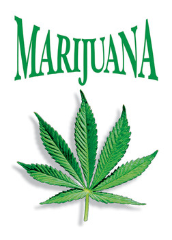 Juliste Marijuana leaf