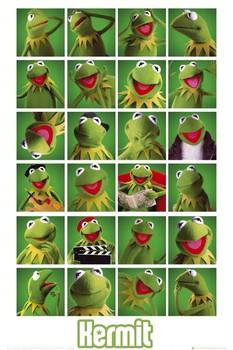 Juliste  MUPPETS - kermit collage