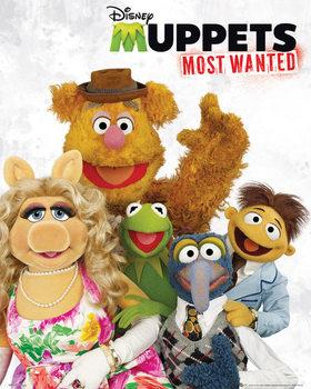 Juliste  Muppets most wanted - cast