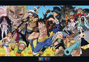 Juliste One Piece - Dressrosa