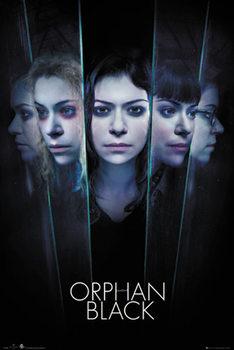 Juliste Orphan Black - Faces