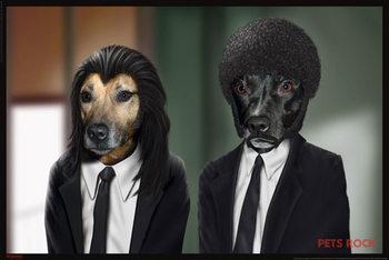 Juliste Pets rock - hitdogs