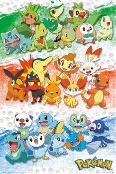Juliste Pokemon - First Partners