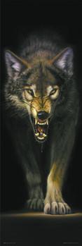 Juliste Prowlinf wolf - streifen wolf