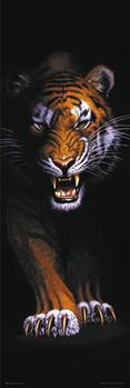 Juliste Prowling tiger