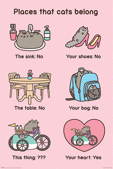 Juliste  Pusheen - Places Cats Belong