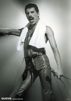 Juliste Queen - Freddie Mercury