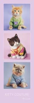 Juliste Rachael Hale - kitty couture