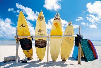 Juliste Sun sea & surf