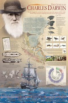 Juliste  The genius of Charles Darwin
