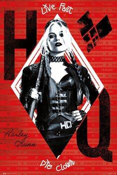 Juliste The Suicide Squad - Harley Quinn