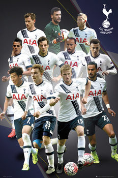 Juliste Tottenham Hotspur FC - Players 15/16