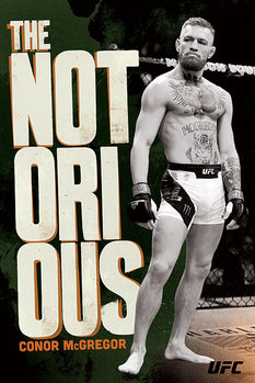 Juliste  UFC: Conor McGregor - Stance