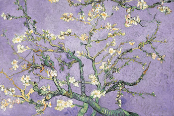 Juliste VINCENT VAN GOGH - purple blossom