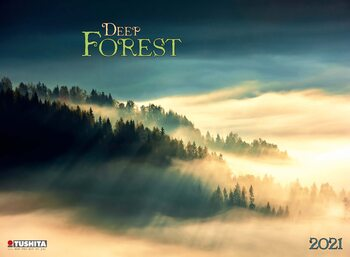 Kalenteri 2021 Deep Forest