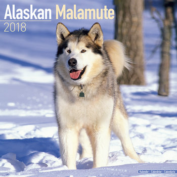 Kalenteri 2018 Alaskan Malamute