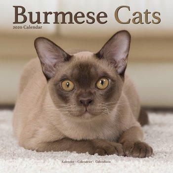 Kalenteri 2020  Burmese