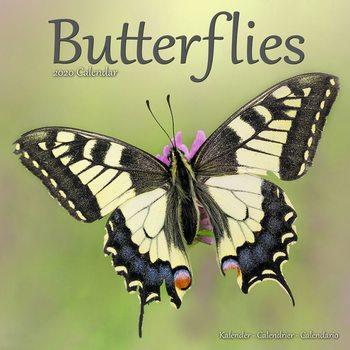 Kalenteri 2020  Butterflies
