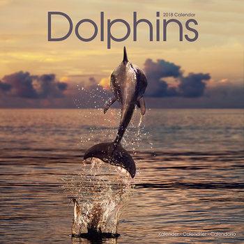 Kalenteri 2018 Dolphins