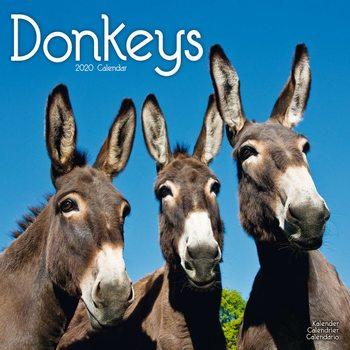 Kalenteri 2020  Donkeys