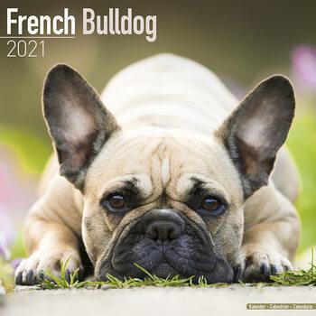 Kalenteri 2021 French Bulldog