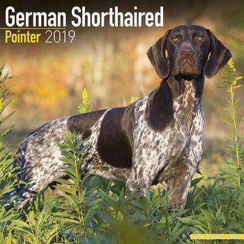 Kalenteri 2019  German ShortHair Pointer