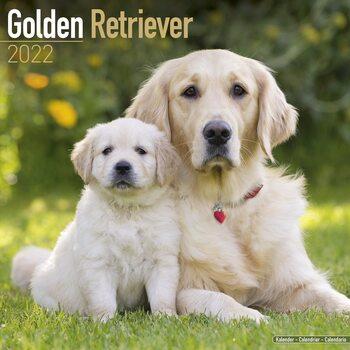 Kalenteri 2022 Golden Retriever