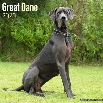 Kalenteri 2020  Great Dane