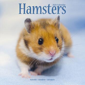 Kalenteri 2021 Hamsters