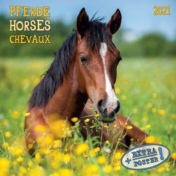Kalenteri 2021 Horses