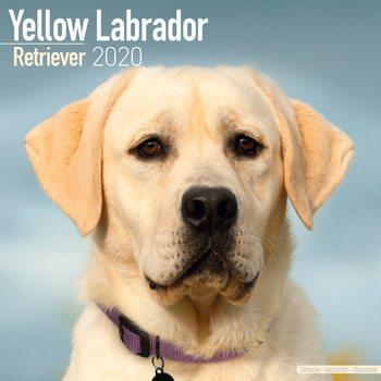 Kalenteri 2020  Labrador – Yellow