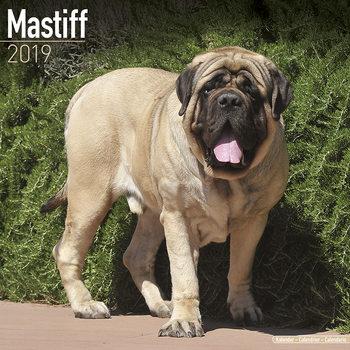 Kalenteri 2020  Mastiff