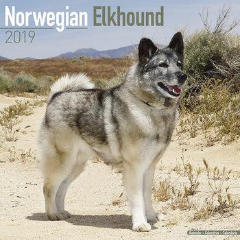 Kalenteri 2020  Norwegian Elkhound