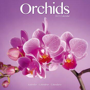 Kalenteri 2022 Orchids
