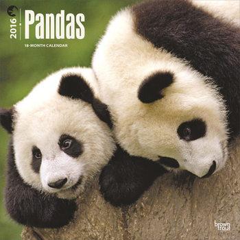 Kalenteri 2021 Panda
