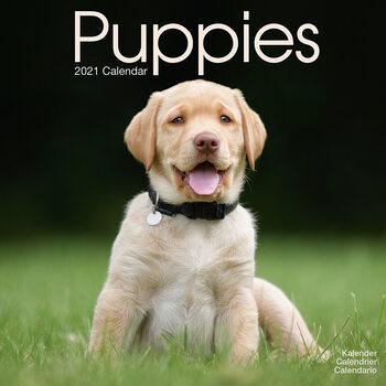 Kalenteri 2021 Puppies
