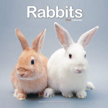 Kalenteri 2022 Rabbits