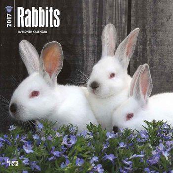 Kalenteri 2017 Rabbits