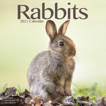 Kalenteri 2021 Rabbits