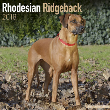 Kalenteri 2018 Rhodesian Ridgeback