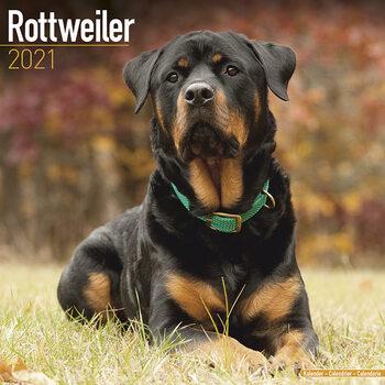 Kalenteri 2021 Rottweiler
