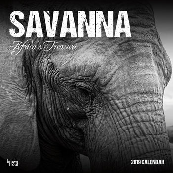 Kalenteri 2020  Savanna - Africas Treasure